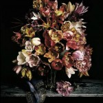 Bouquet de tulipes - Guido Mocafico