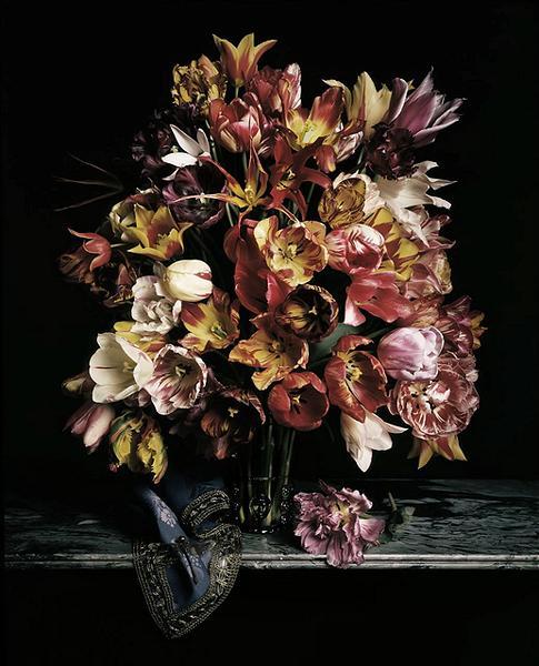 Black Flower 21st Century Op Art Set: Guido Mocafico